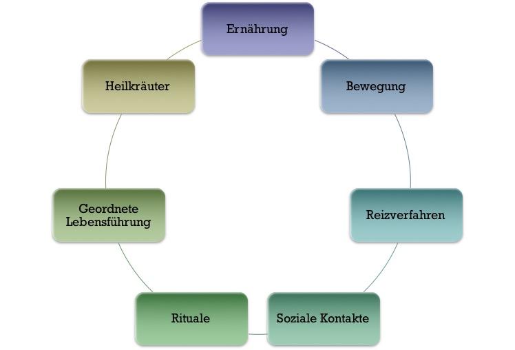 Sieben Säulen der Alpenmedizin Buch Volksmedizin