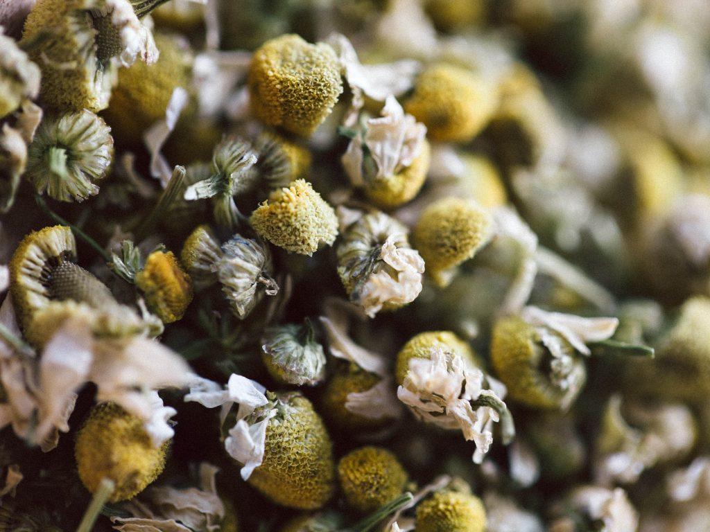 Kamillenblüten Halsschmerzen Teemischung Rezept