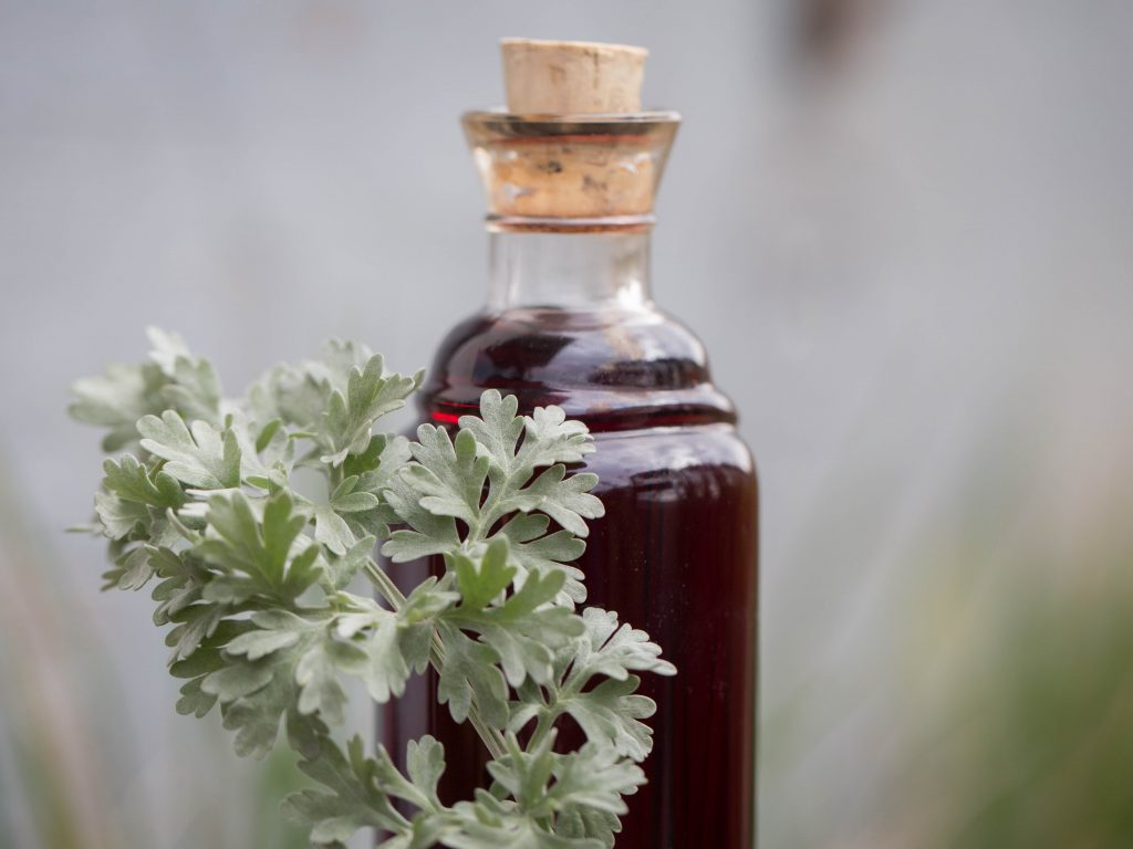 Wermutwein Vermouth
