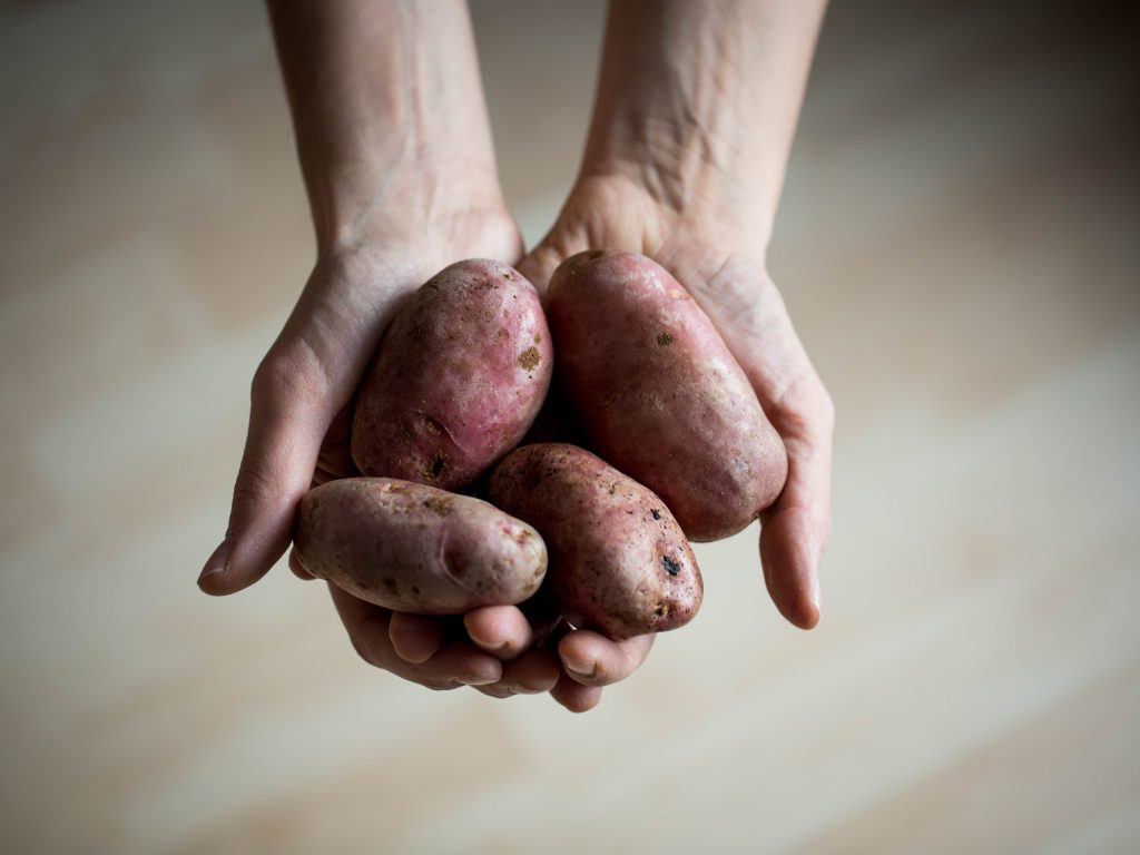 Kartoffel in Hand