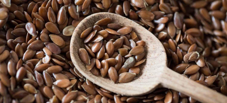 Leinsamen - natürliches und mild wirksames Abführmittel